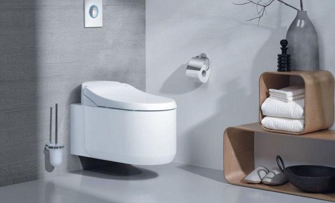 Choisir les bonnes toilettes