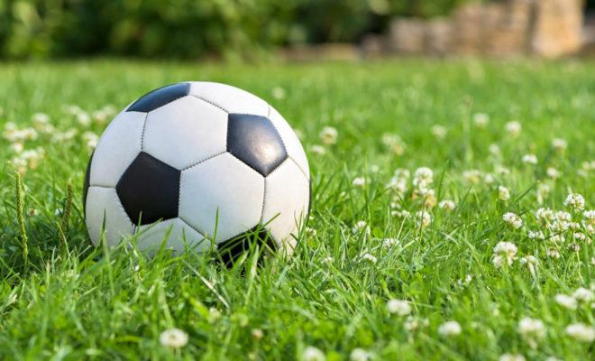 foot dans jardin