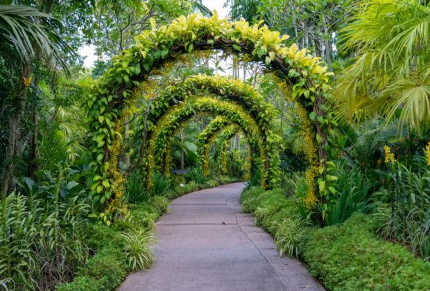 la romance à votre jardin