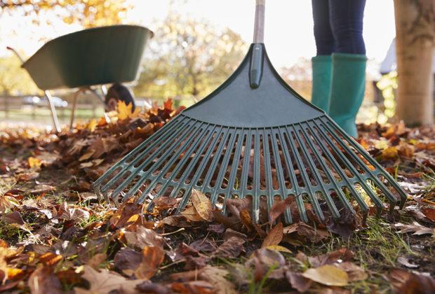 outils de ramassage de feuilles