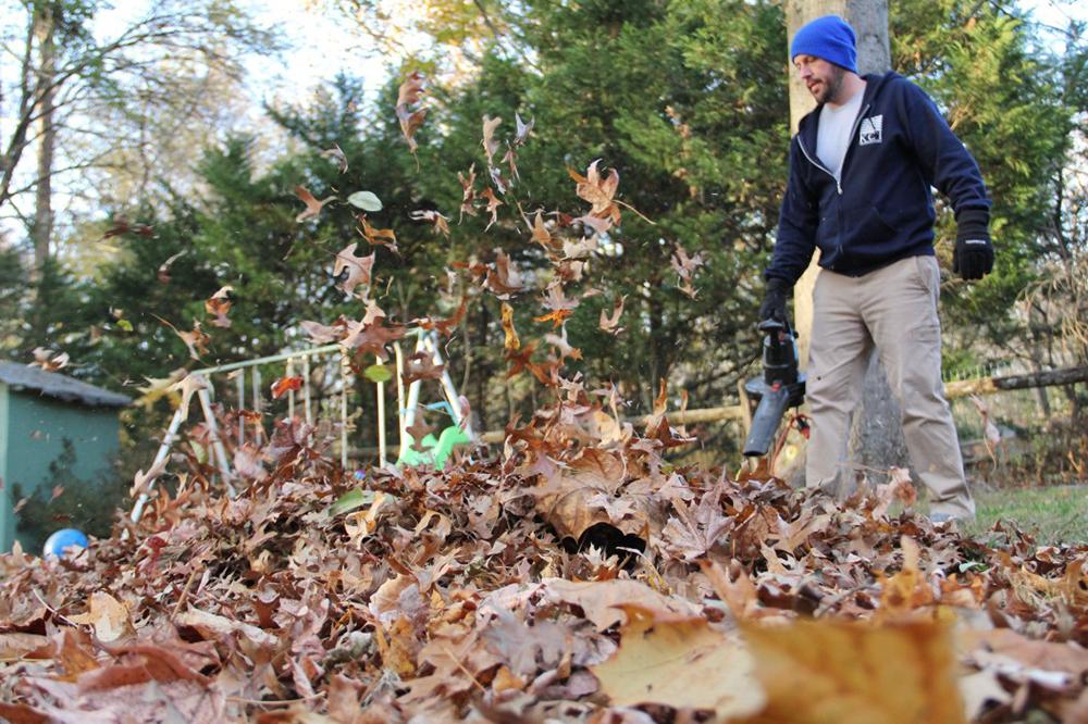 ramasser feuilles mortes